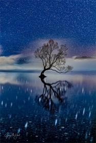 Gary Hart Photography: Starry Night, Lake Wanaka, New Zealand