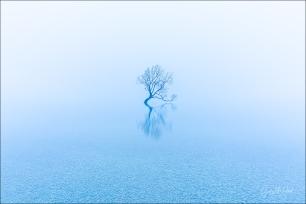 Gary Hart Photography: Gray Dawn, Lake Wanaka, New Zealand