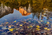 Gary Hart Photography: Autumn Accent, Half Dome, Yosemite