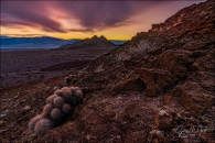 Gary Hart Photography: Prickly Sunset, Hell's Gate, Death Valley