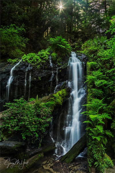 Gary Hart Photography: Deep Forest Cascade, Russian Gulch Fall, Mendocino Coast