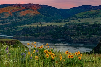 Gary Hart Photography: Spring Sunset, Rowena Crest, Columbia River Gorge