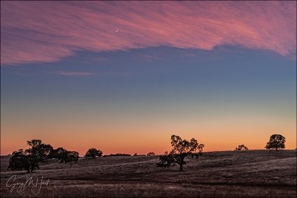 Gary Hart Photography: Sunset Accent, Crescent Moon and Oaks, Sierra Foothills