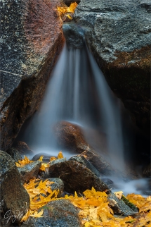 Gary Hart Photography: Autumn Veil, Bridalveil Creek, Yosemite