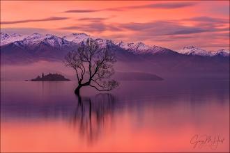 Gary Hart Photography: Red Sunset, Lake Wanaka, New Zealand