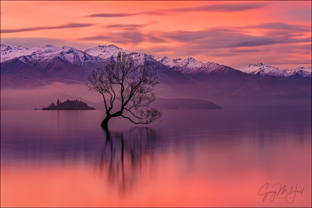 Gary Hart Photography: Red Sunset, Lake Wanaka, New Zealand