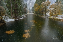 Gary Hart Photography: Falling Snow, Cathedral Rocks, Yosemite