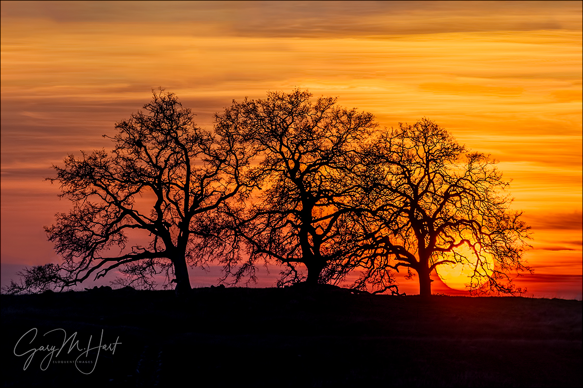 Gary Hart Photography: California Sunset, El Dorado Hills, Sierra Foothills
