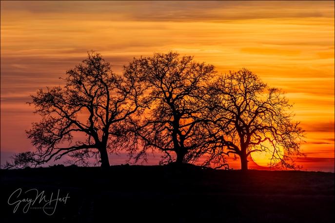 Gary Hart Photography: California Sunset, El Dorado Hills, Sierra Foothills