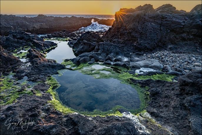 Gary Hart Photography: Tidepool and Sunstar, Thor's Well, Oregon