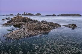 Gary Hart Photography: Tidepool, Seal Rock, Oregon