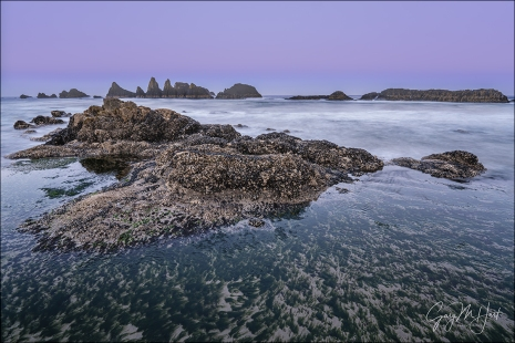 Gary Hart Photography: Tidepool, Seal Rock, Oregon