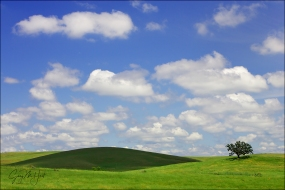 Gary Hart Photography: Spring in the Foothills, Sierra Foothills, California