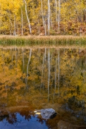 Gary Hart Photography: Aspen Autumn Reflection, Bishop Creek Canyon, Eastern Sierra